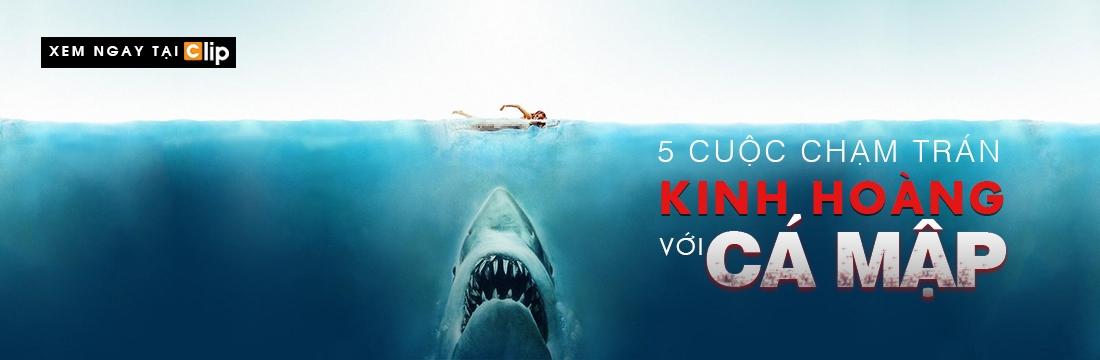 5 Cuộc Chạm Trán Kinh Hoàng Với Cá Mập